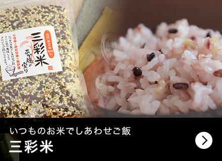 いつものお米でしあわせご飯 三彩米